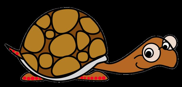 redfoot turtle cartoon